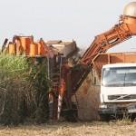 Crédito para o agronegócio puxa crescimento em Ribeirão Preto