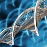 Supera Parque participa de convenção internacional de biotecnologia