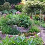 Oficina de horta ecológica