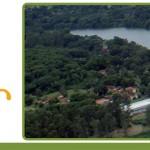 Centro de Estudos e Extensão Florestal da USP Ribeirão comemora 10 anos