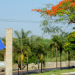 Ribeirão Preto sedia cinco institutos de pesquisas em áreas estratégicas