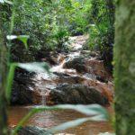 Ambiente É o Meio e o curso sobre Água, Sociedade e Natureza