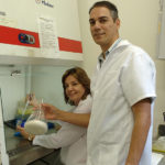 Resíduos da indústria de papel se transformam em bioetanol