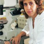Lançado banco genético de brasileiros