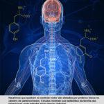 Controle do Parkinson pode estar próximo