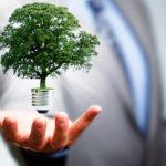 Investimento em meio ambiente melhora saúde, aponta estudo
