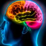 USP testa estimulação cerebral contra obesidade