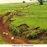 Ambiente É o Meio discute o impacto das atividades rurais