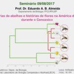 Abelhas e flores na América do Sul é tema do Café com Ciência