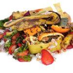 """Reciclagem de alimentos no """"Ambiente É o Meio"""""""