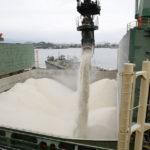 Exportação de açúcar continua em alta