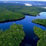 """Amazônia no """"Ambiente É o Meio"""""""