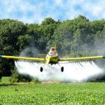 """Fiscalização agropecuária e uso de agrotóxicos no """"Ambiente é Meio"""""""