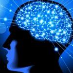 Modelos matemáticos em neurociência