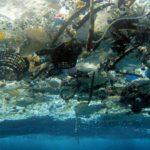 """Contaminação oceânica no """"Ambiente é o Meio"""""""