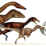 """Evolução dos dinossauros é tema do """"Café com Ciência"""""""