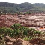 Pesquisa avalia cultivo de arroz em lama da Samarco