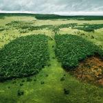 """Avaliação de Impacto Ambiental é tema do """"Ambiente é o Meio"""""""