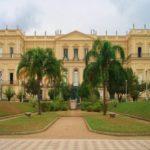 A criação do Museu da Biodiversidade na USP