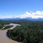 Preservação da Amazônia precisa ser pautada