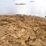 Programa discute saúde pública após rompimentos de barragens