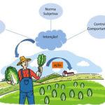 Seminário avalia motivação de produtores para plantio sustentável