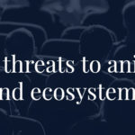 Simpósio internacional discute ameaça de fungos